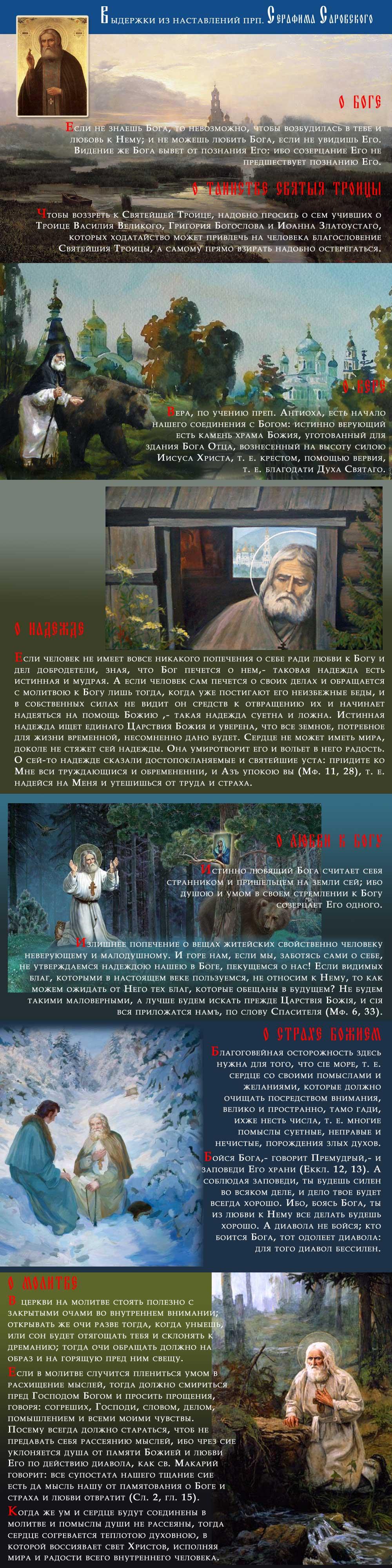 prpSerafim-Infografica-3